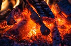 烧在火的木头 免版税库存照片
