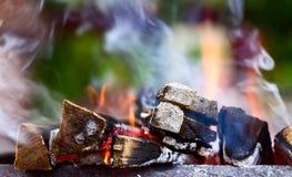 烧在火盆的木柴 免版税库存图片