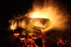 烧在营火的木日志 图库摄影