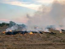 烧在领域的秸杆 免版税库存照片