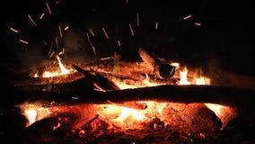 烧在黑暗的背景的篝火 股票录像