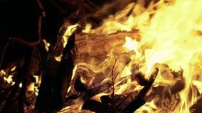 烧在黑背景,慢动作的火焰特写镜头  影视素材