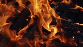 烧在黑背景,慢动作的火焰特写镜头  股票录像