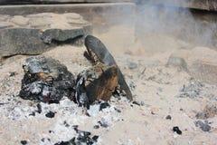 烧在firepit的木炭 免版税库存照片