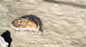 烧得发嘶声煮沸的热的上升暖流合并拉森火山区 免版税库存照片
