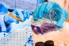 烧杯在科学家手和积土化学制品上到试管科学家里用设备和科学试验 免版税库存照片