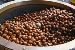 烧烤栗子用在一个特别转台式机器a的咖啡豆 免版税图库摄影