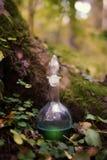 烧瓶用在木头的魔药 库存照片