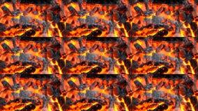 烧黑和红色炭烬火火焰关闭  股票录像