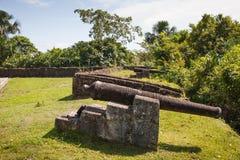 热兰遮城,南美洲,圭亚那堡垒的枪  免版税库存图片