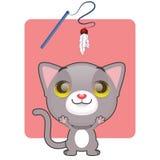 热切逗人喜爱的灰色的小猫使用 免版税库存照片