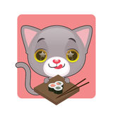 热切逗人喜爱的灰色的猫吃寿司 图库摄影
