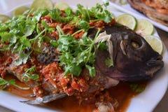 热和辣蒸汽鱼 免版税库存图片