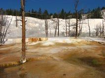 热声势浩大的国家公园反弹石黄色 免版税图库摄影