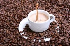 热奶咖啡vii 免版税图库摄影