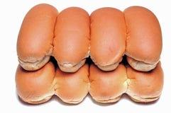 热小圆面包的狗 免版税库存照片
