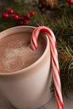 热巧克力、棒棒糖和常青树大树枝 免版税库存图片