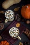 热巧克力和秋天南瓜 免版税库存图片