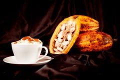热巧克力用在黑色的可可粉荚 免版税库存图片