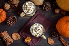 热巧克力用秋天香料 库存照片