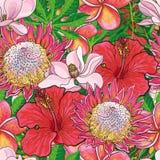 热带与手拉的异乎寻常的绽放的花无缝的样式与棕榈叶 库存例证