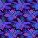 热带与棕榈香蕉monstera的夜叶子植物无缝的样式离开,垂悬heliconia花,鹤望兰 库存图片