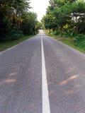 热带乡下的路 免版税库存照片
