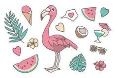 热带传染媒介例证设置与逗人喜爱的动画片样式桃红色火鸟鸟,棕榈和Monstera叶子,心脏,椰子,太阳镜, 皇族释放例证