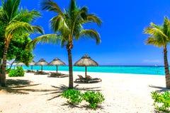 热带假日-海滩睡椅和伞在毛里求斯海岛 免版税库存照片