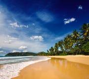 田园诗海滩。 斯里南卡 库存照片