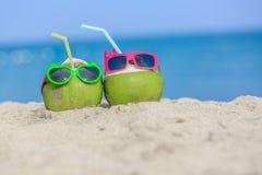 热带假期旅行概念,两新年轻椰子说谎 图库摄影
