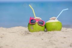 热带假期旅行概念 免版税库存照片