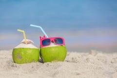 热带假期旅行概念 免版税库存图片