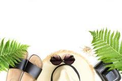 热带假期样式 秸杆海滩sunhat,太阳镜,海滩掴,蕨叶子在白色背景的 与拷贝spac的顶视图 库存照片