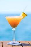 热带假期的概念 在码头的异乎寻常的鸡尾酒 Luxur 图库摄影