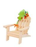 热带假期青蛙 免版税库存照片