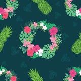 热带兰花木槿花花圈样式 库存图片