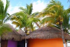 热带加勒比椰子小屋palapas的棕榈树 免版税库存照片