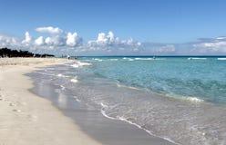 热带加勒比海滩和绿宝石水风景 库存照片