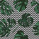 热带印刷品 无缝密林的模式 与夏威夷花的传染媒介热带夏天主题 皇族释放例证