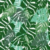 热带叶子无缝的样式 绿色棕榈叶背景 免版税库存照片