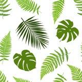 热带叶子无缝的样式 免版税库存照片