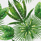 热带叶子样式雪 库存例证