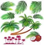 热带叶子的掌上型计算机 免版税图库摄影