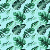 热带叶子的无缝的水彩样式,密集的密林 Ha 免版税库存图片
