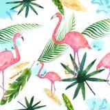 热带叶子的水彩样式,在白色背景隔绝的火鸟 向量例证