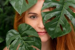 热带叶子的画象年轻和美女 库存图片