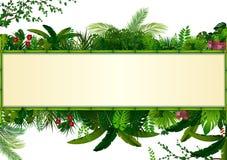 热带叶子背景 长方形种植与空间的框架竹子文本的 与水平的横幅的热带叶子 皇族释放例证