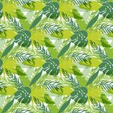 热带叶子,密集的密林 无缝的详细,植物的样式 向量背景 免版税库存图片