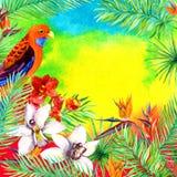 热带叶子,异乎寻常的鸟,兰花花 夏天党的水彩卡片 图库摄影